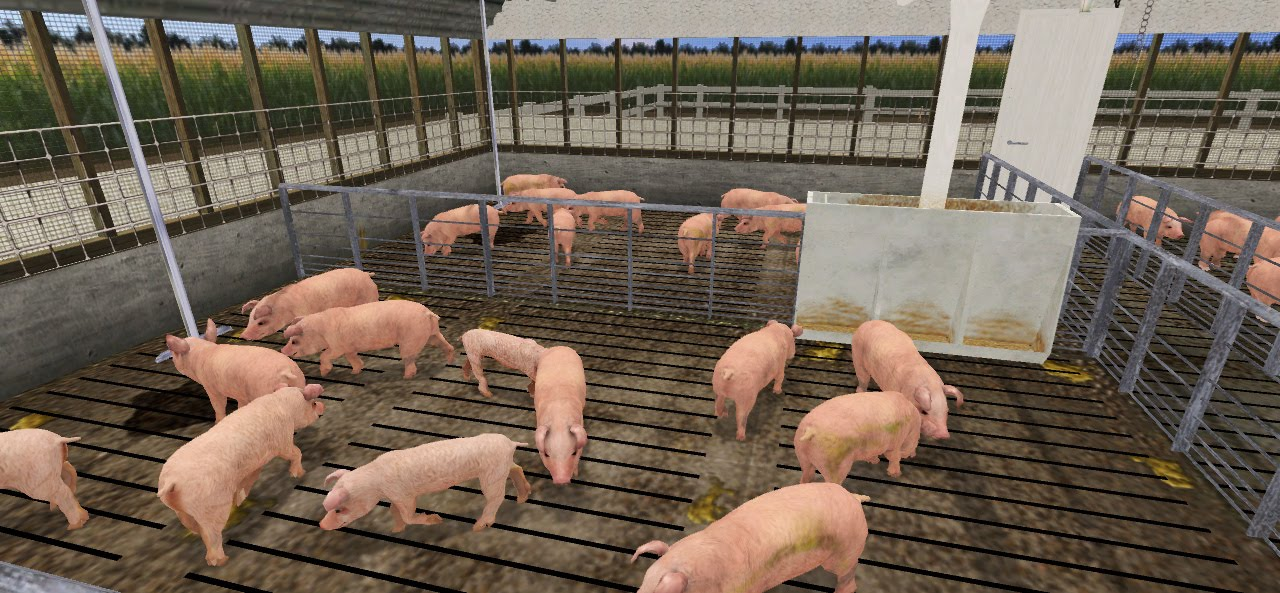 Livestock Production Training Simulator, Virtual Walking the Pens